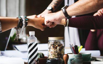 Solving Franchise Marketing Chaos